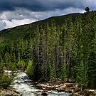 2009 Gilpen County 010 by greg1701