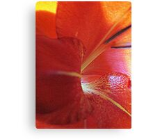Gladiola...Up Close Canvas Print