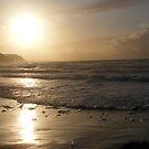 sunset  by Amanda320
