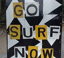 go surf now by michael jenkins