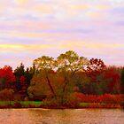 On Echo Lake  by Rick  Todaro