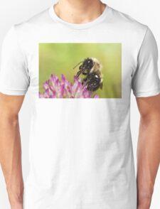 Bumblebee Feeding on Nectar Unisex T-Shirt