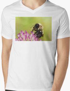 Bumblebee Feeding on Nectar Mens V-Neck T-Shirt