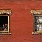 two windows by Lynne Prestebak