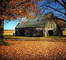 Bicknell Barn by Steve Leath