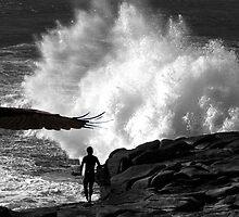 """Kite Surfing"" Brahminy Kite by Mike Larder"