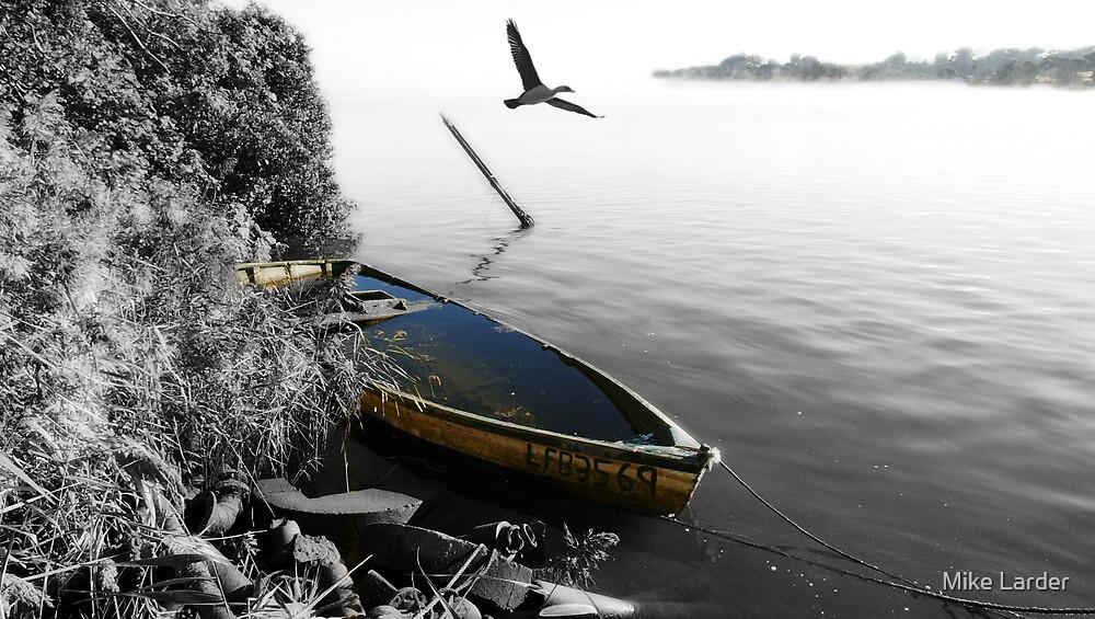 """""""That Sinking Feeling"""" Cormorant by Mike Larder"""
