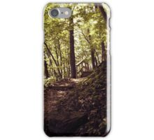Frontenac Pathway iPhone Case/Skin