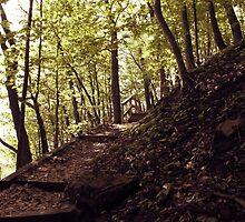 Frontenac Pathway by UnCreativeK9