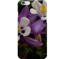 PURPLE COLUMBINE iPhone Case/Skin