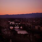 The Magical Arno by Hallie Duesenberg