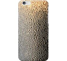 Pitted Black and Gold iPhone / Samsung Galaxy Case iPhone Case/Skin
