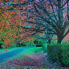 Autumn Lane by Jess Mo