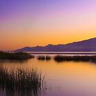 Sunset at Utah Lake by CDNPhoto