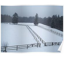 Horse Paddocks in winter, Bad Homburg Poster