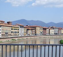 River through Pisa by Lael Woodham