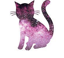 Scorpius Pink | Space Kitty Photographic Print