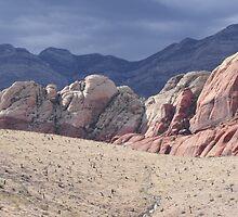 Red Rock, Las Vegas, Nevada by shawnmanji
