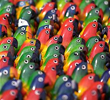Brightly Coloured Balsa-wood Models of Parrots, Ecuador   by Petr Svarc