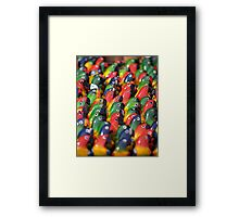 Brightly Coloured Balsa-wood Models of Parrots, Ecuador   Framed Print