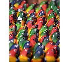 Brightly Coloured Balsa-wood Models of Parrots, Ecuador   Photographic Print