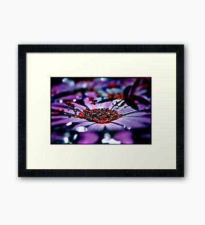 nature colours Framed Print