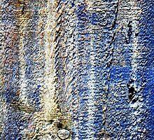 Tracks of Time by Wayne Gerard Trotman