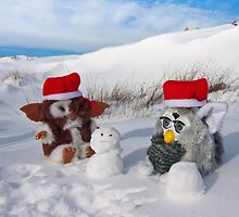 Gizmo & Furby build a snowman by Jon Bradbury