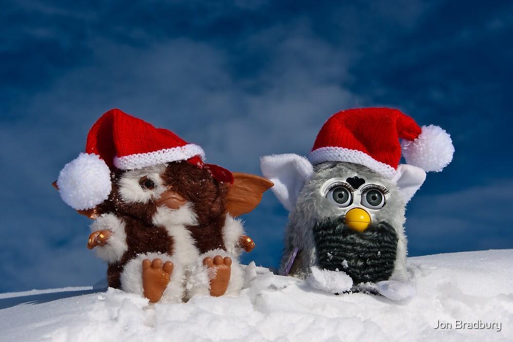 Gizmo & Furby in the snow by Jon Bradbury