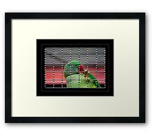 Who is watching who  Framed Print