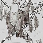 Love Birds by cjsheena