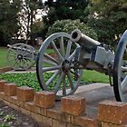 Kings Park Cannons by mattsibum