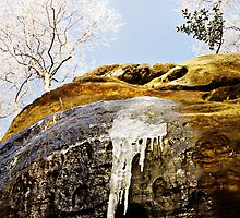 Ice on sandstone with frozen trees by Robert Munro