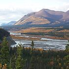 wilderness yukon by francis  carter