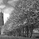 Buckland Brewer Church by Robert Kendall