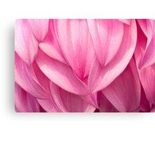 Petals Flowing Canvas Print