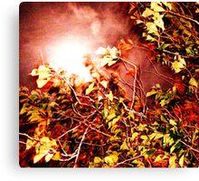 Autumn Blinded Canvas Print