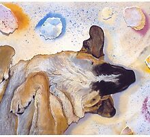 DOG DREAMS by Pat Saunders-White