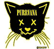 purrvana Photographic Print