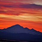 Sunrise over Mount Baker... by Carol Clifford
