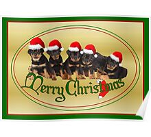 Merry Christmas Rottweiler Puppies Greeting Card Poster