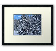 Snowy Trees in Austria Framed Print
