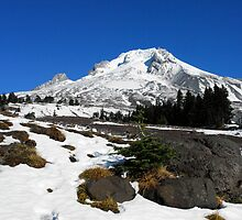 Majestic Mt. Hood by worldtripper