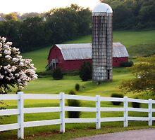 Red Tennessee Barn by Jennifer Rigsby