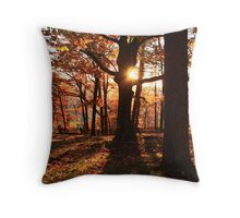 Fall Sunset at Signal Point Throw Pillow