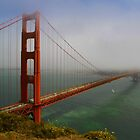 Spanning into Fog by Barbara  Brown