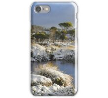 Snow at Mt Field iPhone Case/Skin