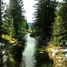 Spanish Creek, Montana by kayzsqrlz