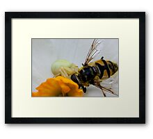 death of a worker Framed Print