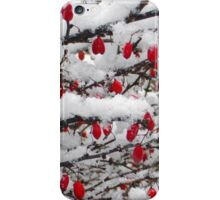 Snowy Morn No.2 iPhone Case/Skin